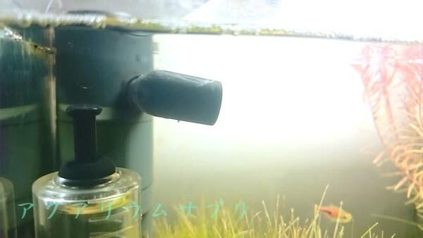 水質 改善 水槽